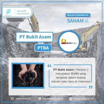 Analisis Fundamental Saham PTBA